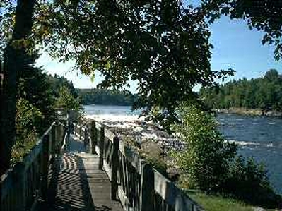 Domaine Pine Grove